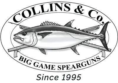 Collins Big Game Logo
